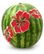Printable Hawaiian Flower Stencils Joy Studio Joy Studio